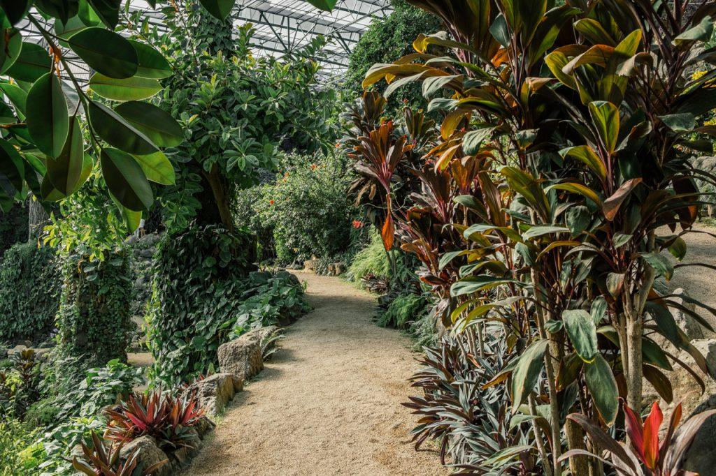 Lizbona tropski raj
