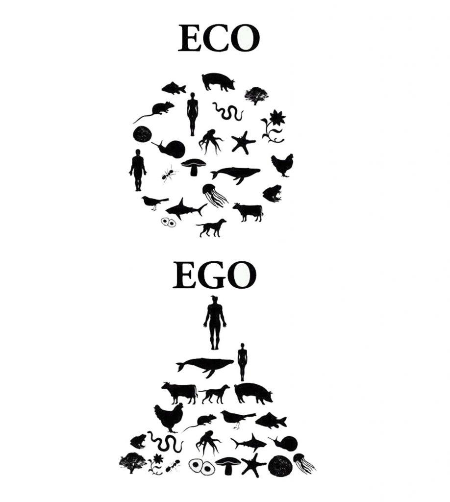 eko okoljevarstvo vrednota